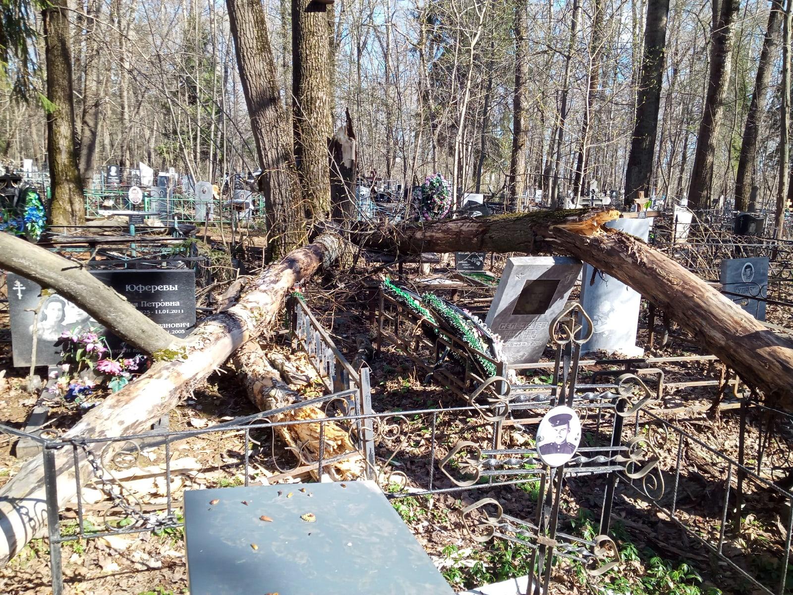 На Лобановском кладбище сломанные деревья повредили памятники
