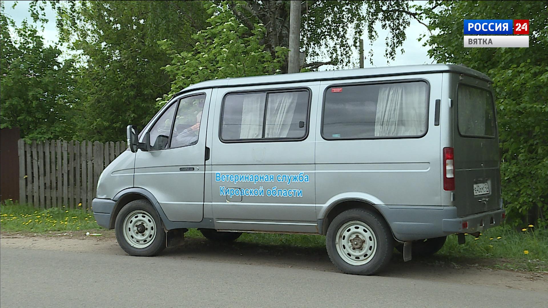 В Нововятском районе Кирова можно будет бесплатно привить домашнее животное от бешенства